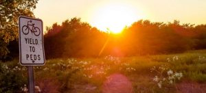 arbor hills, bike trail sign, nature and sunset