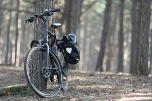 a bike by the tree